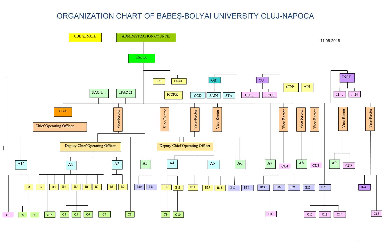 Organization Chart Of Bbu Babe Bolyai University